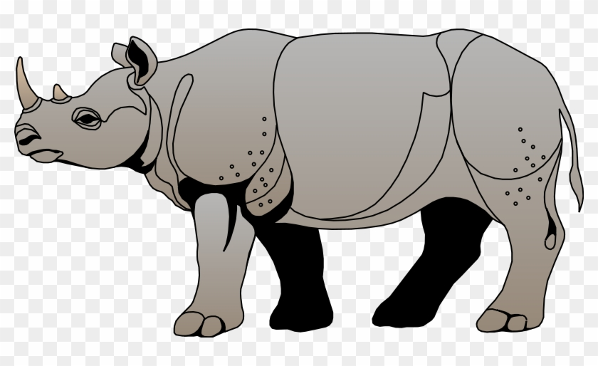 Animals Rhino Clipart Animal Cliparts Free Download - Rhinoceros #196294