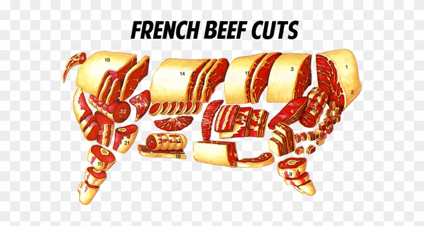Cuts Of Meat Carving For Turkey Chicken Lamb Beef Venison