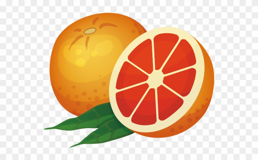 Orange Icon - Vector Grapefruit - Drawing #1190135