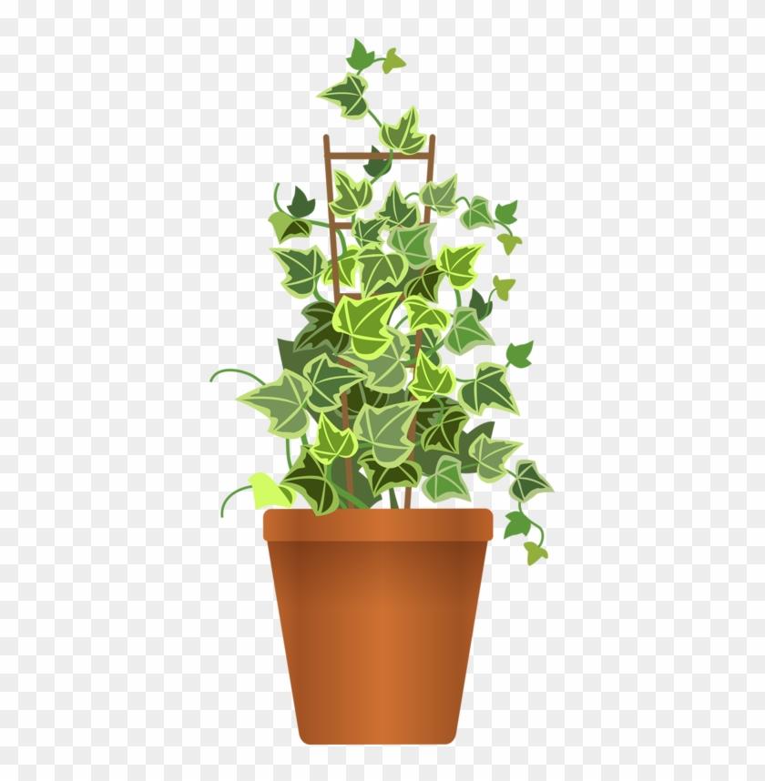Pot Plant Clipart Flora - Pot Flower Plant Png #1193059