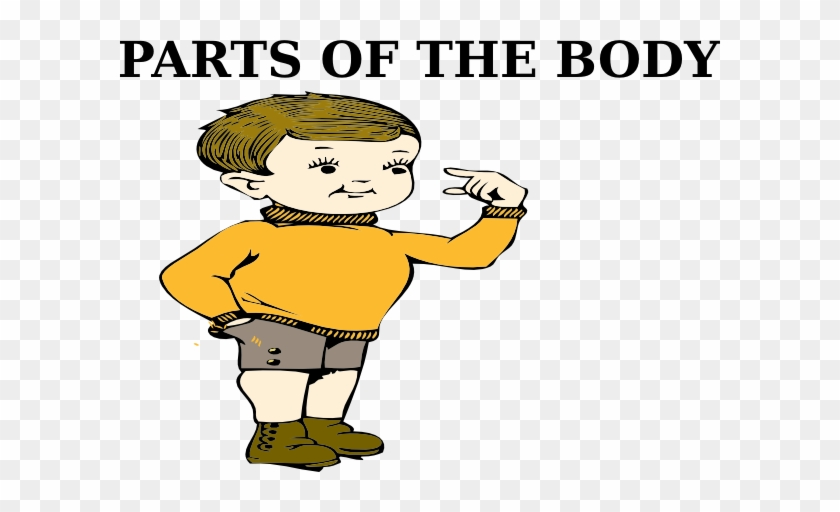 Parts Of The Body Clip Art At Clker Body Part Clip Art Free Transparent Png Clipart Images Download