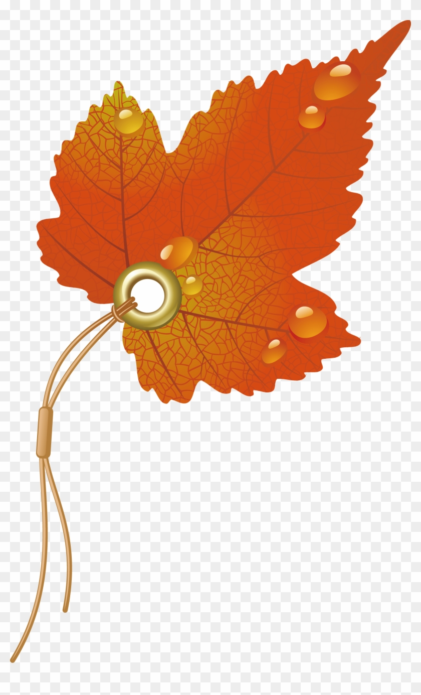 Maple Leaf Clipart Watermelon - Autumn Leaves Vector #1195661