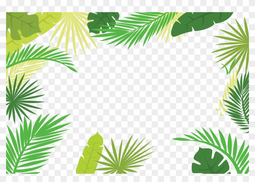 Arecaceae Text Branch Leaf Illustration Tropical Leaves Border Png Free Transparent Png Clipart Images Download Dracaena recina, succulent tropical leaf vintage illustration transparent png, remix from original artwork of benjamin… leaves design resources · high quality aesthetic backgrounds and wallpapers, vector illustrations, photos, pngs, mockups, templates and art. arecaceae text branch leaf illustration