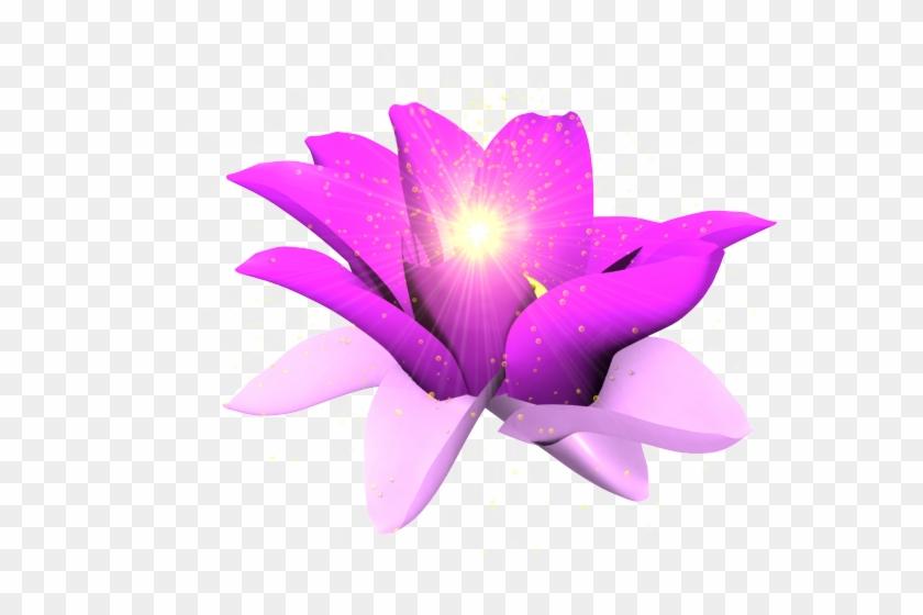 Glowing Purple Flower Png #1201291