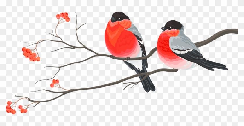 Bird Wedding Invitation Christmas Card Christmas Decoration - Wedding Birds Png #1202842