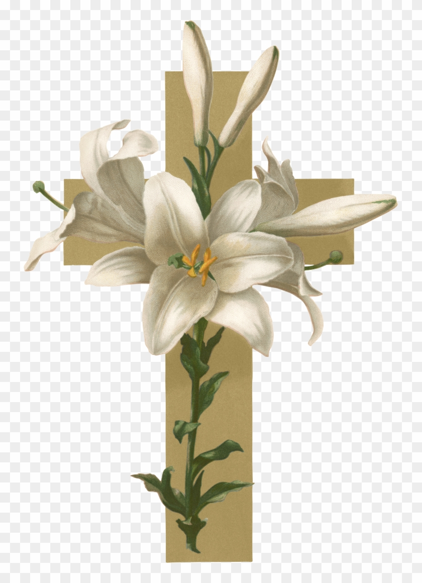 Easter Lily Christian Cross Flower Funeral Clip Art Adaptability