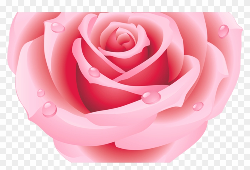 Large Pink Rose Heart Clipart Hearts Pinterest Pink Heart Rose