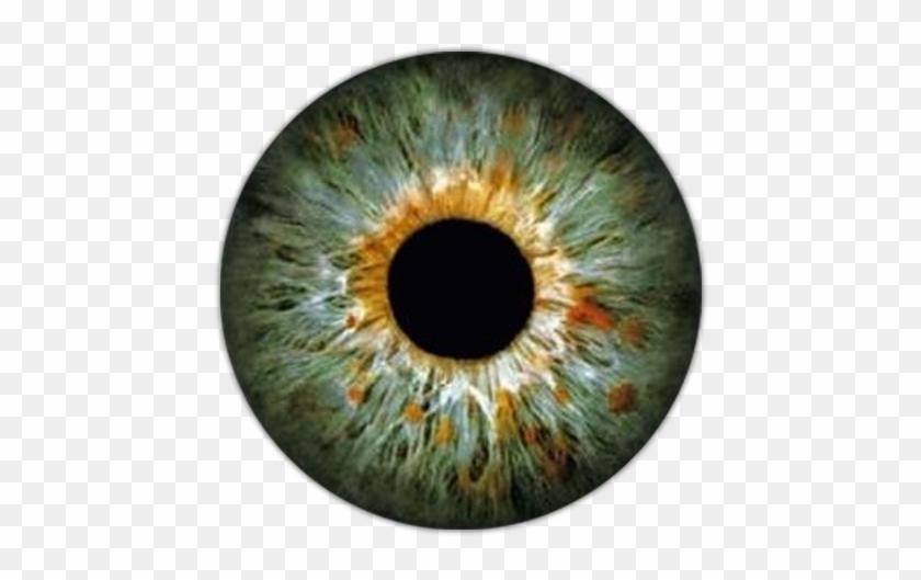 Eye Lens For Picsart #1208767