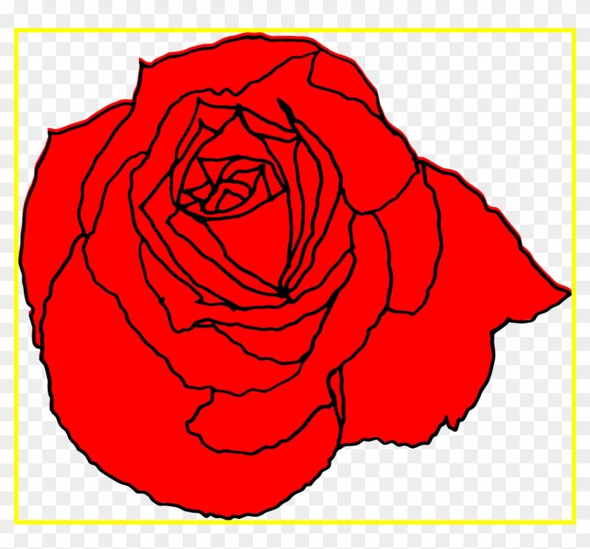 Rose Flower Rose Flower Outline Png Astonishing Rose Red Roses