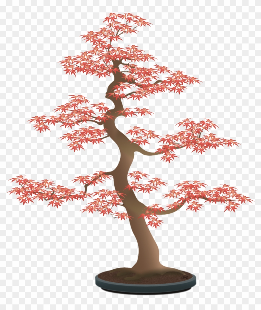 Since The Leaves In The Photo Were Quite Small, I Had - Bonsai Tree Draw Png #1217069