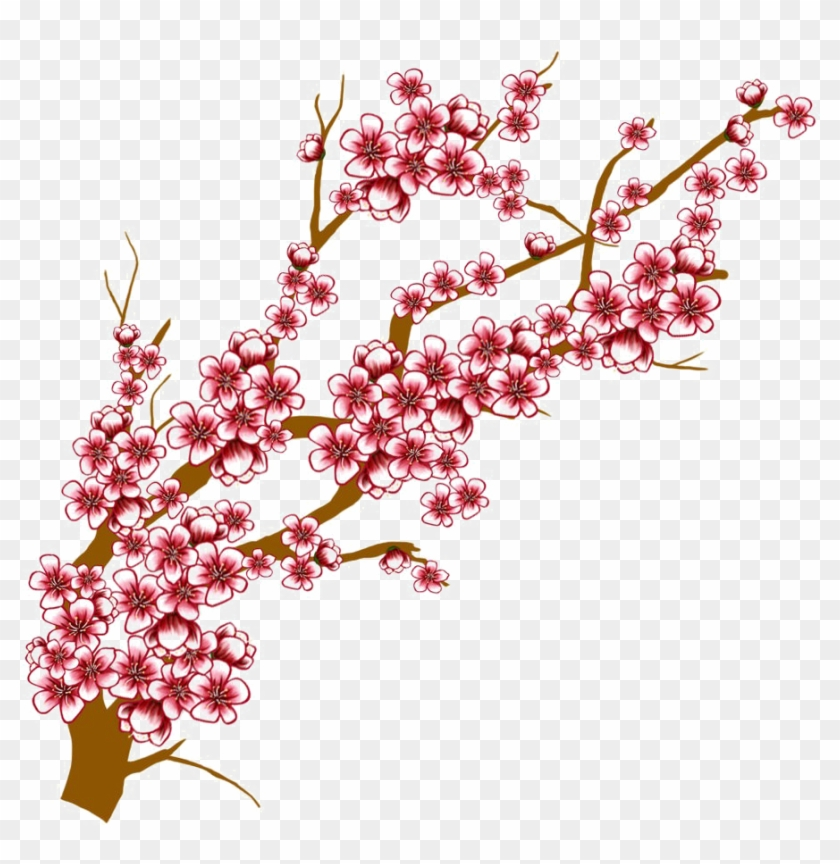 Japanese Flowering Cherry Transparent Background - Cherry Blossom Tree Branch Drawing #1217102