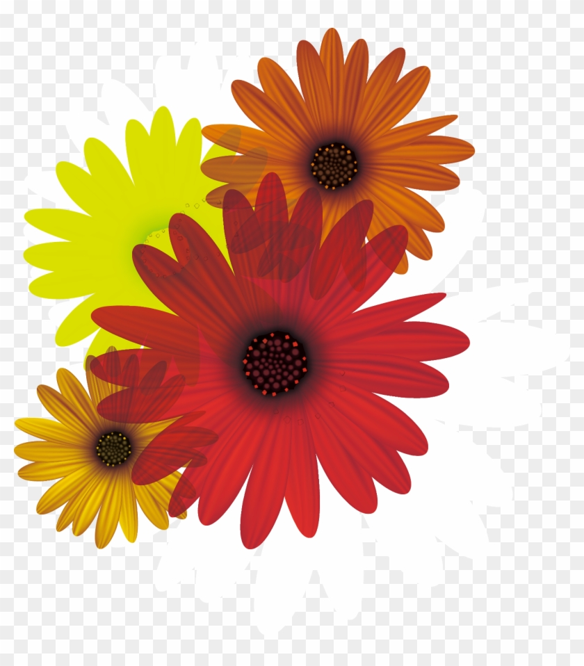 Vector Clipart Daisy Flowers Pictures Picturesboss