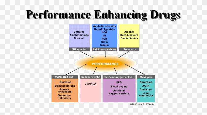 K Tlc Guide To Performance Enhancing Drugs - Types Of