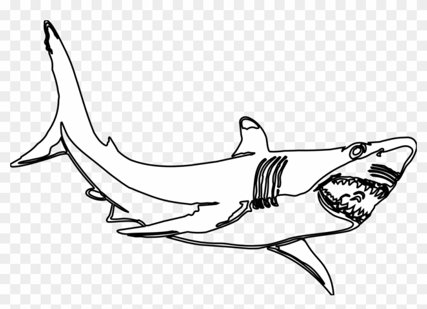 Hammerhead Shark Template Free Download Clip Art With - Sand Tiger Shark Coloring Page #197297