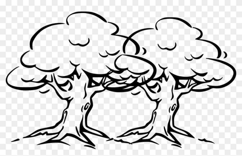 Tree Cartoon Black And White Outline Drawing Banyan Tree Free Transparent Png Clipart Images Download Finished drawing of cartoon trees. white outline drawing banyan tree