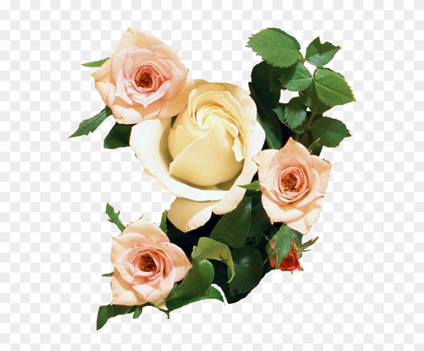 Rosa De Papel Tapiz De Desktop De Ramo De Flores De - Wedding Anniversary Wishes With Flowers #1228886