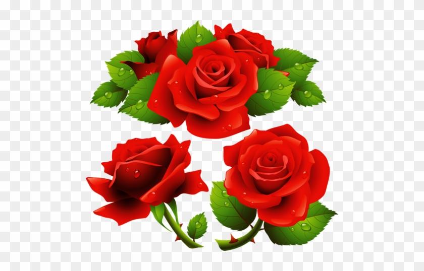Rose-flowers1 - Rose Flower Frames Design #1228954