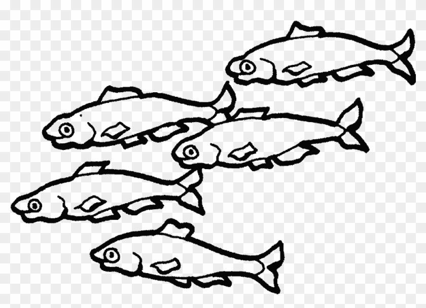 ¿qué Enfermedades Puede Transmitirte Un Animal Doméstico - School Of Fish Colouring Page #1236175