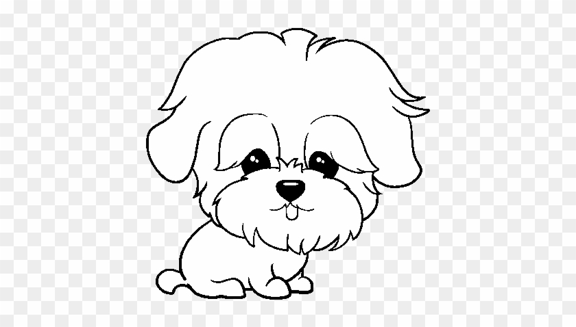 Dibujos Caras De Perros Maltes Imagenes De Perritos De Dibujito