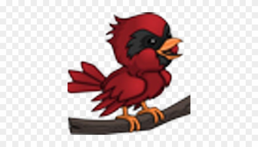Ov Live Updates Cartoon Cardinal Bird Free Transparent Png