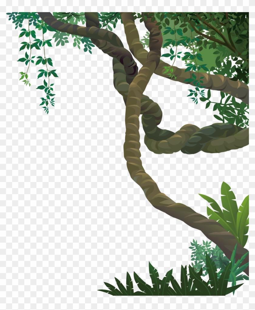 Landscape Jungle Euclidean Vector - Forest Vine ...