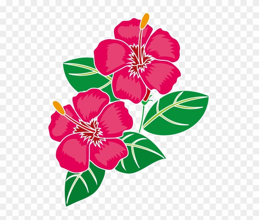 夏の花1 16 ハイビスカスイラスト ハイビスカス 絵 Free Transparent