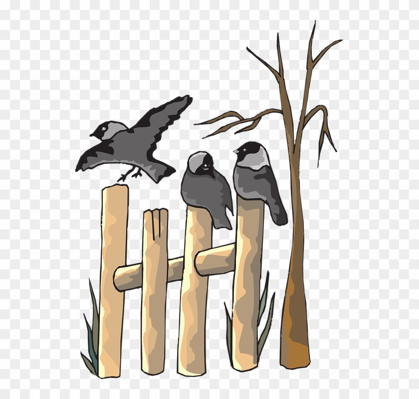 Cuckoo Clipart Bird On Tree - Dead Animals And Plants Clipart #1241276