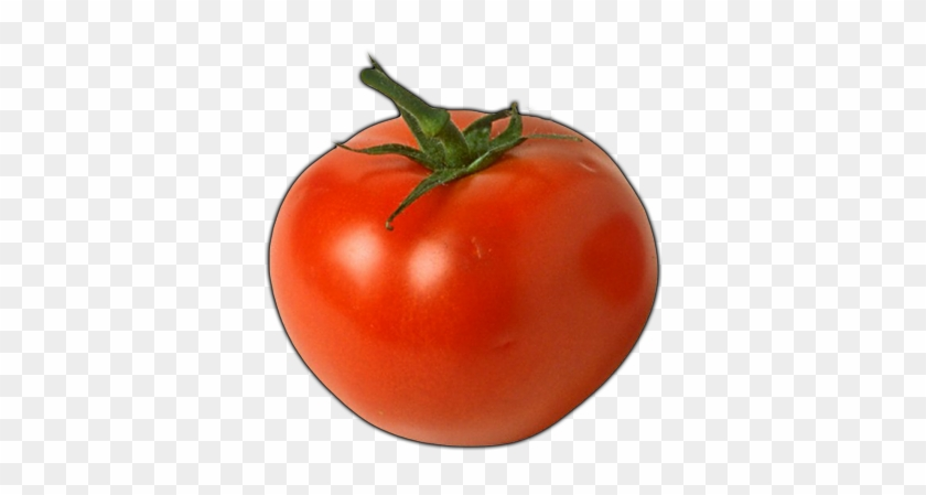 Click Here To See Tomato Album - Man Who Can T Visualize A Horse Galloping On A Tomato #1250202