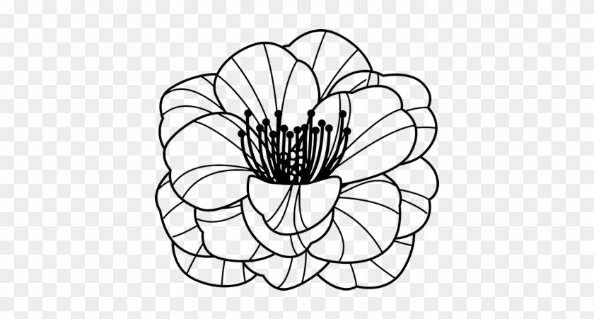 Dibujos De Flores Para Colorear Crisatemos - Free Transparent PNG ...