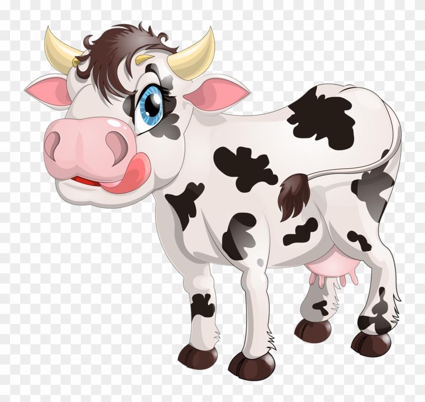 Dairy Cattle Milk Calf