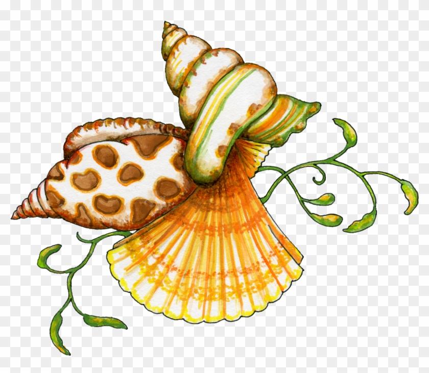 Flamingo Clipart Sea Shell - Seashell Clip Art Free #201105