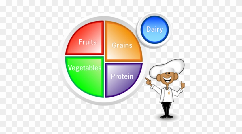 Choose Myplate Clipart - Healthy Food Groups Plate #202900