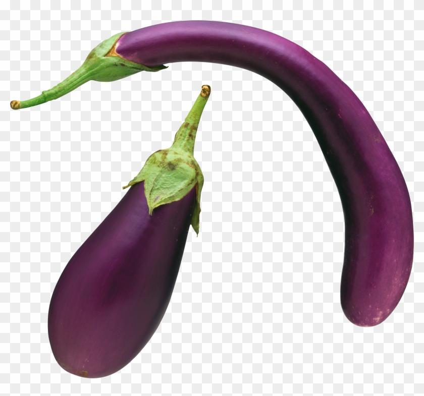Transparent Eggplant #202977