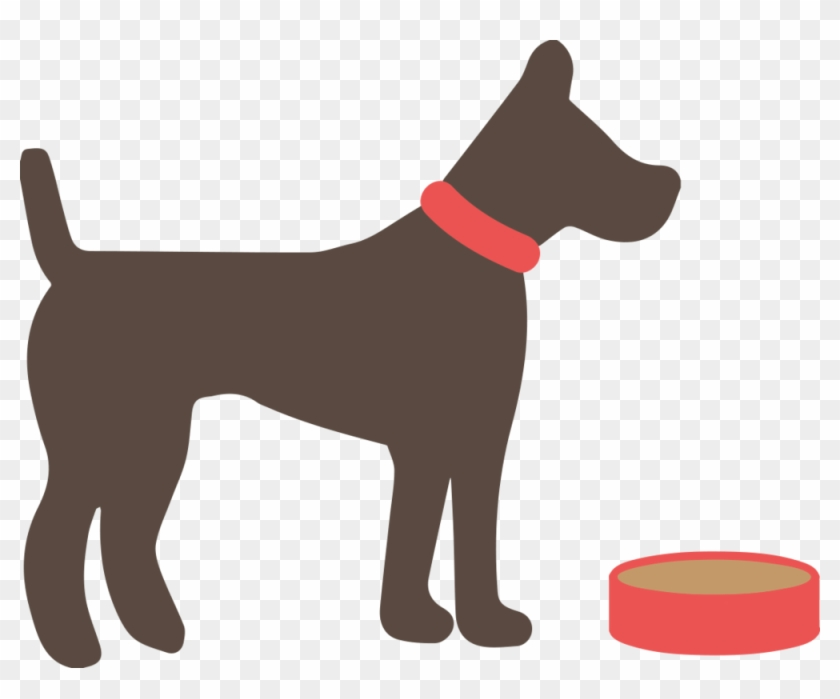Dog Food - Myths And Truth About Animals #203295