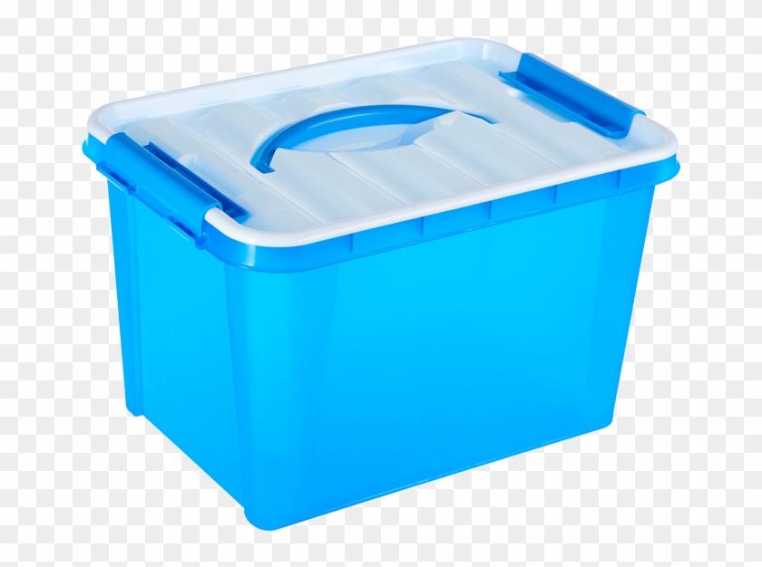 Box Plastic Lid Paper Container - Box #1271518