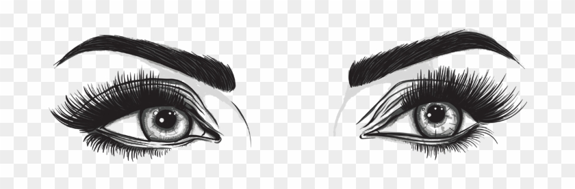 Human Eyes Clipart Black And White - Eyes And Eyebrows Png #1274002