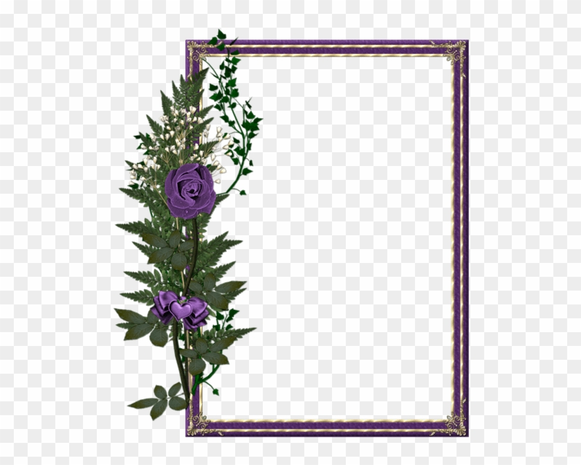 All New Beautiful Frames - Free Transparent PNG Clipart