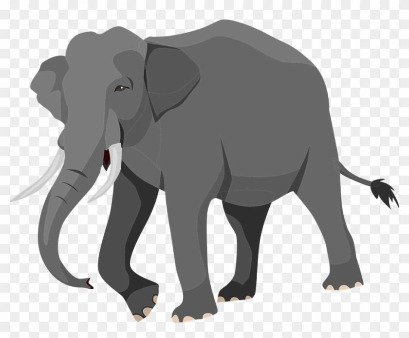 Elephant Graphic Elephant Vector Png Free Transparent Png Clipart Images Download Download transparent elephant png for free on pngkey.com. elephant graphic elephant vector png
