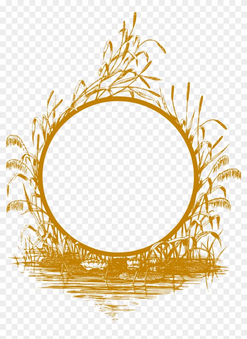 Frame Gold Frame Rectangle Frame Frame Gold 2