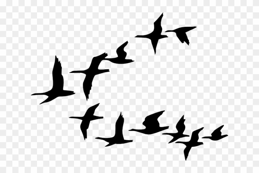 Birds Flying Clipart Birds Cartoon Black And White Free