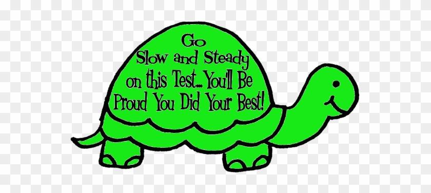 Turtle Clipart Race Basit Boyama Sayfalari Free Transparent