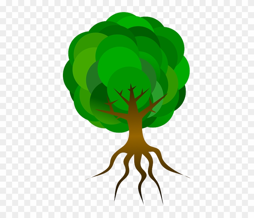 Nature Tree, Branches, Roots, Skeleton, Plant, Leaves, - Cartoon Tree With Roots #1300246