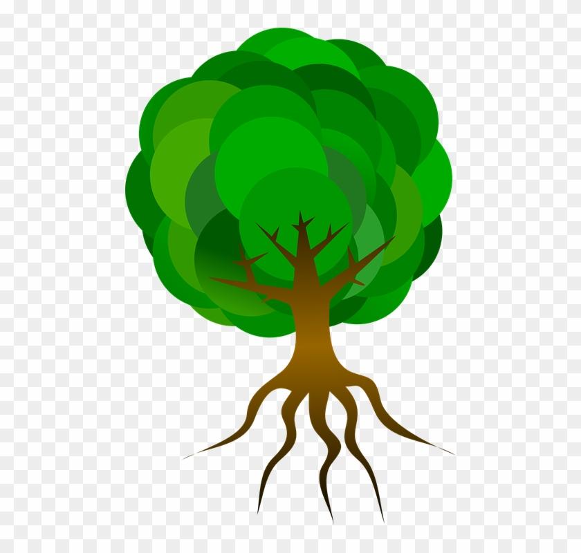 Tree Cartoon Png 28, Buy Clip Art - Cartoon Tree With Roots #1305655