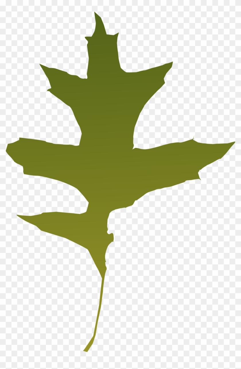 Clipart Png File Tag List, Clip Arts Svg File - Green Oak Leaf Vector #27263