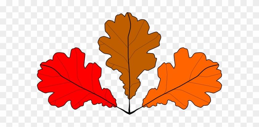 Showing Post & Media For Red Maple Tree Cartoon - Imagini Din Frunze De Toamna #27281