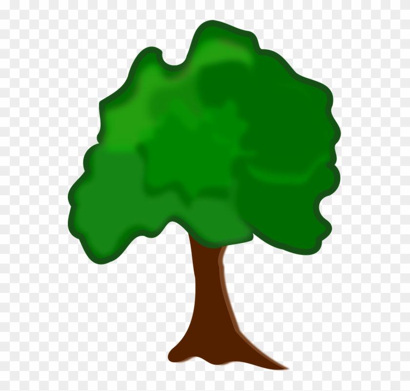 Clip Art Flora Nature Plant Tree - Arvore Clipart #27555
