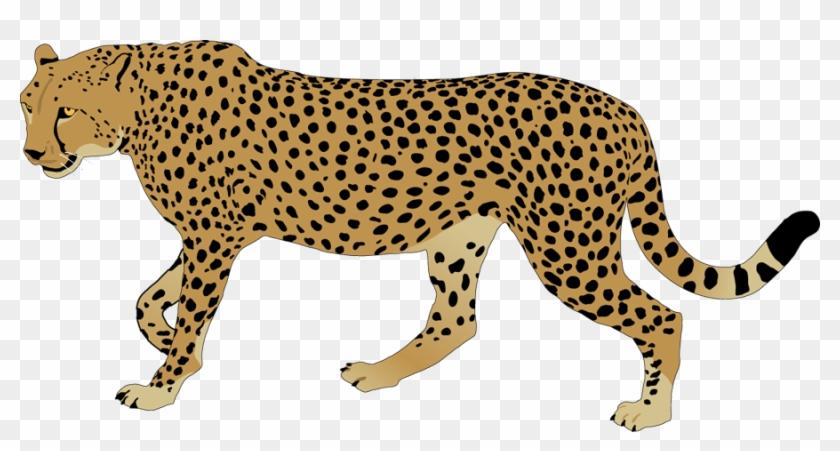 Top 68 Cheetah Clipart - Cheetah Images Clip Art #27600