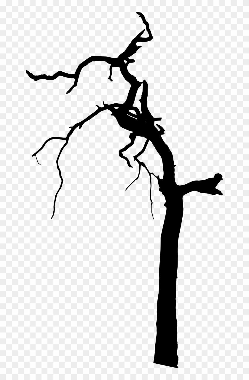 Free Download - Tree #27652
