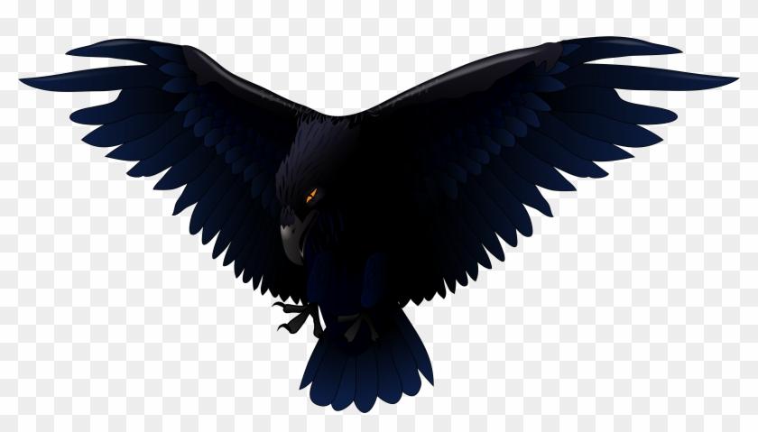 Raven Clip Art - Raven Vector #27848