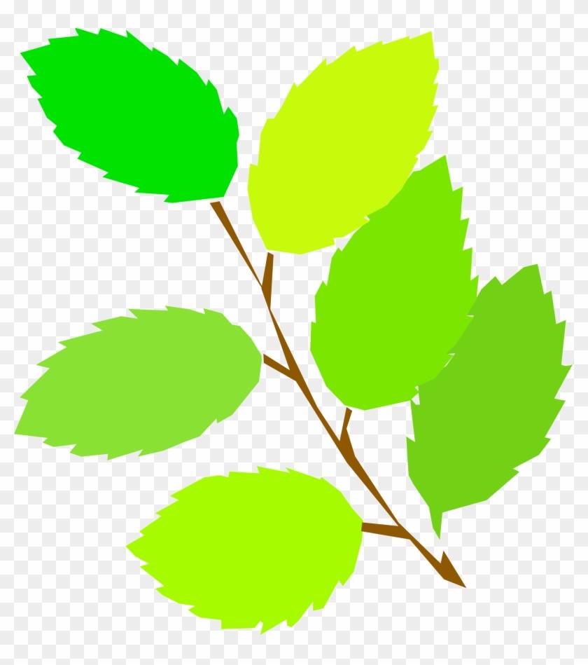 Big Image - Spring Leaves Clipart #27891